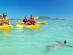 Kailua Beach Adventures - Hawaii Discount