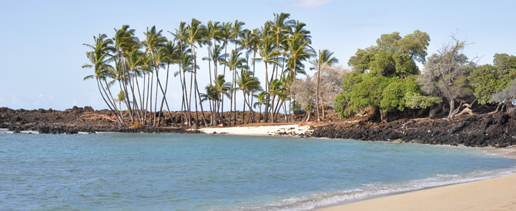 kona helicopter tours discount with Historic Kona Tour on Historic Kona Tour together with Snorkel Map also 8 Best Kona Beaches moreover Maui additionally Bite Me 3.