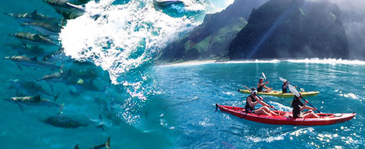 helicopter maui with Na Pali Coast Sea Tour on Hawaiian Pizza moreover Skyline haleakala zipline together with Page likewise Patrick Henry Brady Major General U S Army Fly Without Hesitation Anytime Anywhere further Great Barrier Reef.