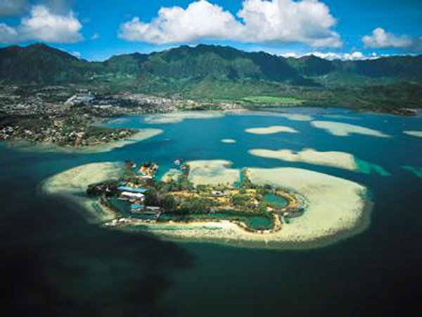 Makani Kai Helicopters - Hidden Oahu Flight - Hawaii Discount