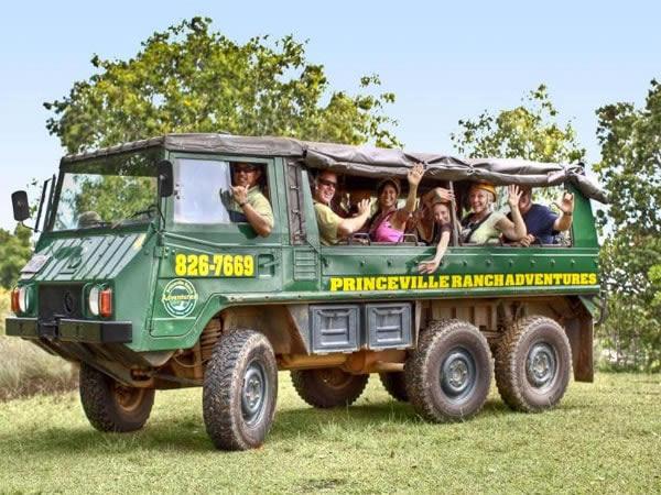 Princeville ranch adventures kalihiwai falls hike for Department of motor vehicles kauai