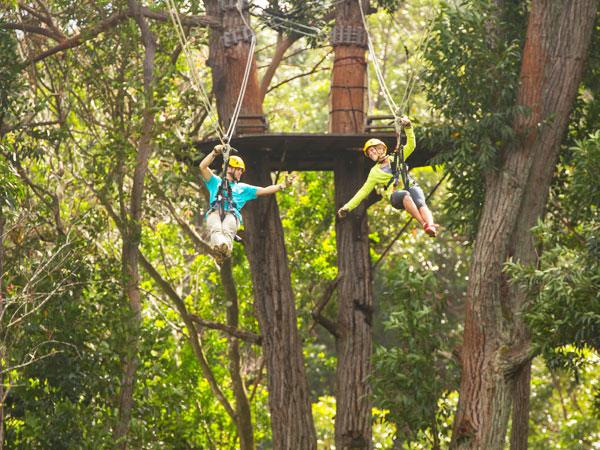 kohala zipline tour & Kohala Zipline - Kohala Canopy Tour - Hawaii Discount