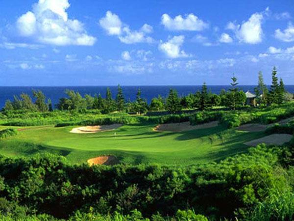 Plantation Course at Kapalua - Hawaii Discount