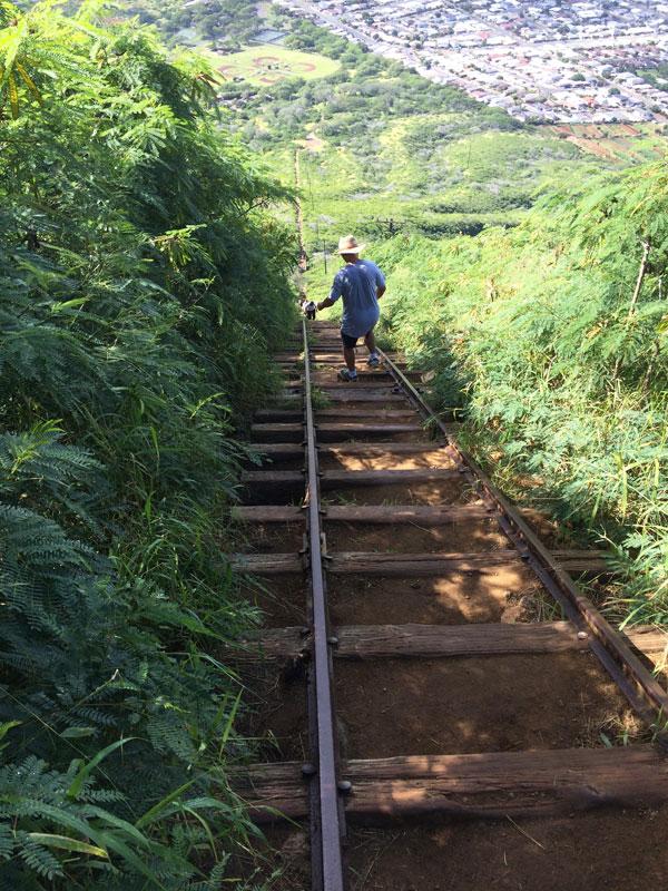 Hiking Oahu Tours Koko Head Crater Sunrise Hike Hawaii Discount