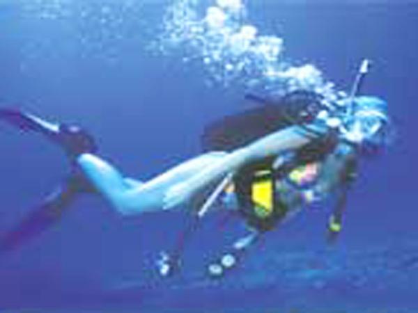 Dive Hawaii Maunalua Bay 8
