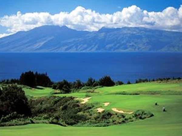 big island helicopter tour with Plantation Course At Kapalua on Ocean Park Hong Kong in addition Hawaii Island Guide further Plantation Course At Kapalua furthermore Florida Black Bear besides Snorkel Map.