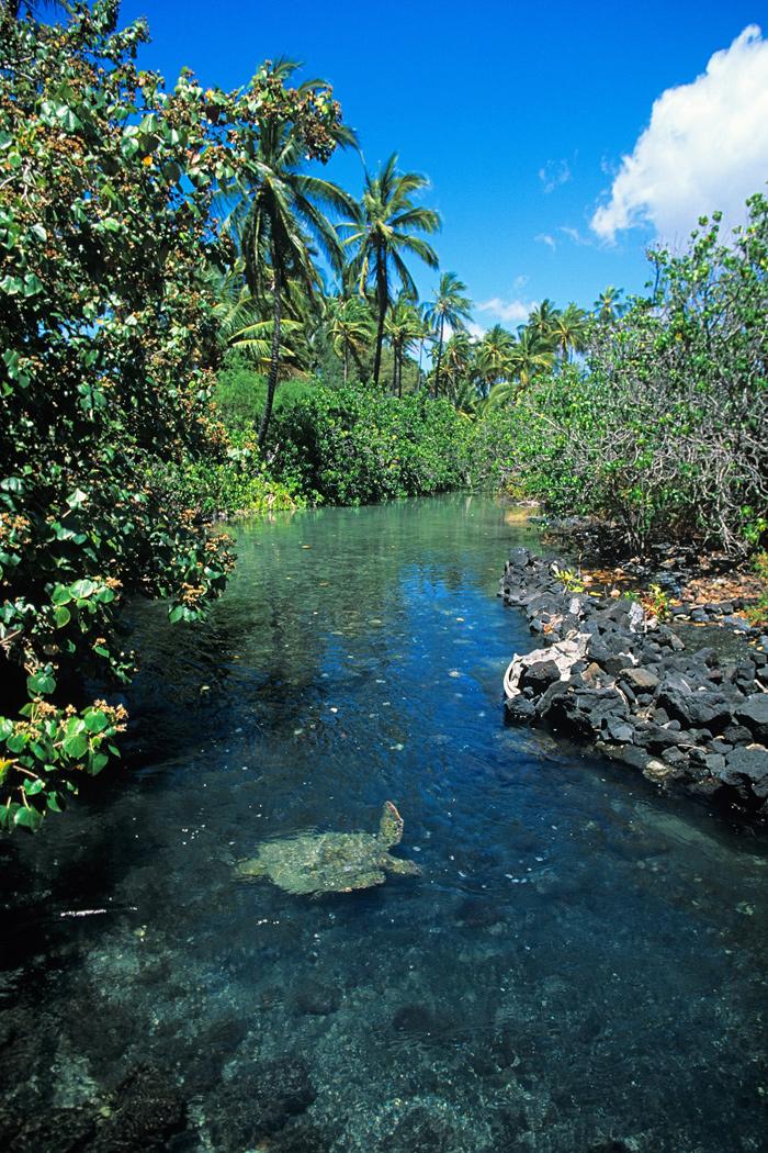 Hawaii Inter Island Travel