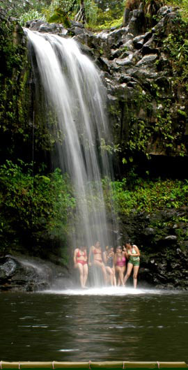 West Maui Waterfalls And Rainforest Hike
