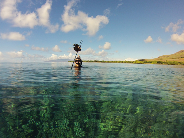 Lopaka 39 s aloha adventures spearfishing hawaii discount for Fishing in maui