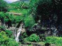 Polynesian Adventure | Road to Hana Tours | Hawaii Discount
