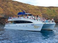 Pacific Whale Foundation - Molokini & Turtle Arches Snorkel - Hawaii Discount