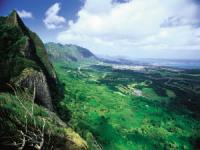Mini Circle Island with Scenic Shores Tour (P1) - Hawaii Discount