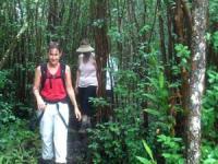 Hawaii Forest & Trail - Endangered Native Habitats - Hawaii Discount