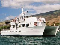Lahaina Cruise Company - Lanai Dolphin Snorkel - Hawaii Discount