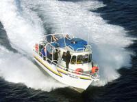 B&B Scuba Diving in Maui - Hawaii Discount
