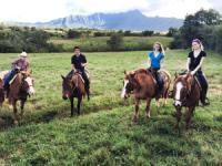 Princeville Ranch Adventures - Waterfall Picnic Horseback Ride - Hawaii Discount