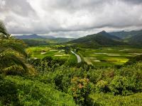 Best of Kauai tour by land & air