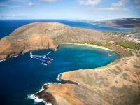 Blue Hawaiian Helicopters - Complete Island of Oahu Tour - Hawaii Discount