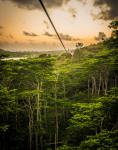 Hawaii Zipline Tour
