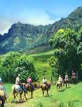 oahu guided horseback tour