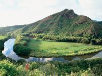 Roberts Hawaii Shore Excursions - Wailua River Cruise & Fern Grotto