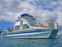Aloha Blue Charters - Deluxe Morning Snorkel - Hawaii Discount