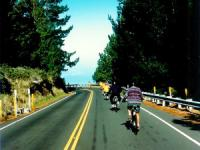 Haleakala Summit Mid-Day Tour - Hawaii Discount