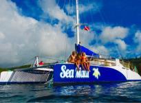 Sea Maui - Mala Xpress Snorkel - Hawaii Discount