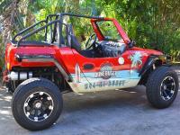 Aloha Buggies - North Shore Dune Buggy Driving Tour - Hawaii Discount