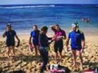 SeaFun Kauai - Beach Snorkel Tour - Hawaii Discount