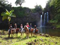 Big Island Hawaii Horseback Riding
