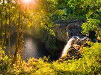 Hawaii Forest & Trail - Hilo Tropical Waterfalls - Hawaii Discount