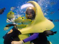 Captain Bob's - BOB Underwater Adventure - Hawaii Discount