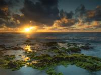 Oahu Photography Tours - Circle Island Sunrise Photo Tour - Hawaii Discount