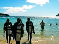 Living Ocean Scuba - Hanauma Bay Scuba Dive - Hawaii Discount