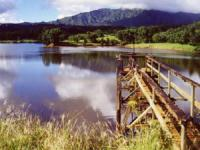 Kauai four wheel drive tours
