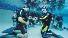Hilo Ocean Adventures - 1 Tank Introductory Beach Scuba Dive - Hawaii Discount