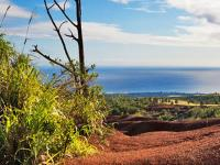 Roberts Hawaii Shore Excursions - Journey to Waimea Canyon