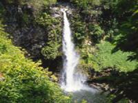 Hike Maui - Full Day Hana Waterfalls and Rainforest Hike - Hawaii Discount