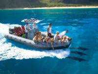 Captain Andy's - Na Pali Raft Snorkel Adventure - Hawaii Discount
