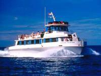 Lahaina Cruise Company - Molokini Snorkel - Hawaii Discount