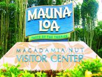 Roberts Hawaii Shore Excursions - Akaka Falls, Mac Nut Farm & Tropical Gardens