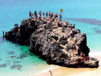 Oahu Nature Tours - Famous North Shore - Hawaii Discount
