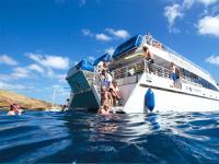 Pacific Whale Foundation - Molokini & Lanai Snorkel Cruise - Hawaii Discount