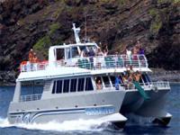 Oahu Dinner Cruise