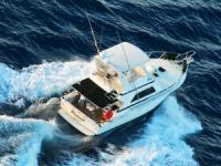 Rascal Charters - Deep Sea Sportfishing - Hawaii Discount