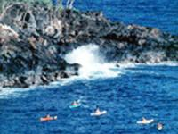 Outfitters Kauai - South Shore Sea Kayak Tour - Hawaii Discount