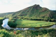 Waimea Canyon and Wailua River Tour (K1) - Hawaii Discount