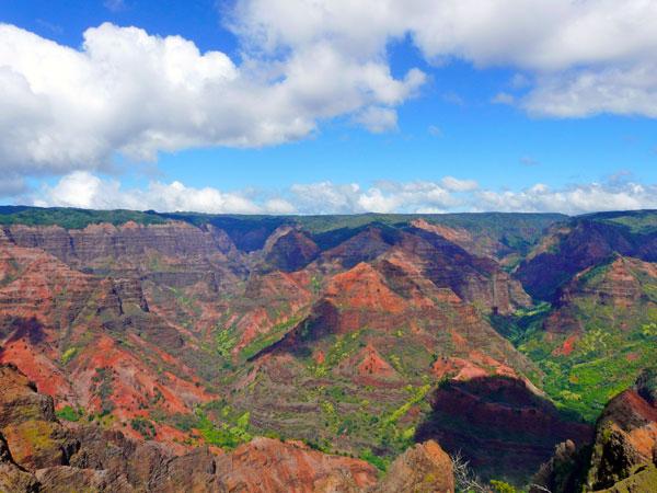 Roberts Hawaii Waimea Canyon Tour