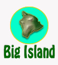 big_island_whale_watching_tours_reservations.jpg